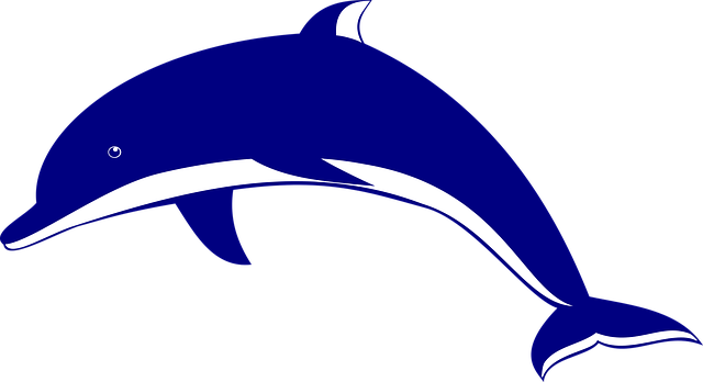 delphin1png
