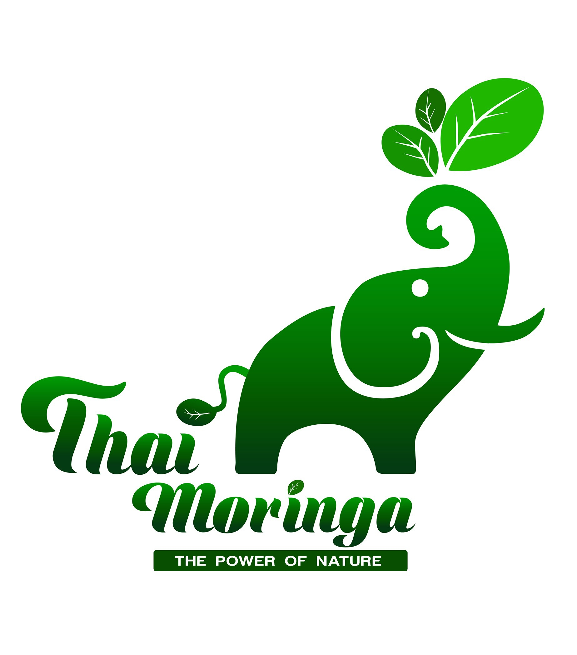 Thai Moringa Co. Ltd.