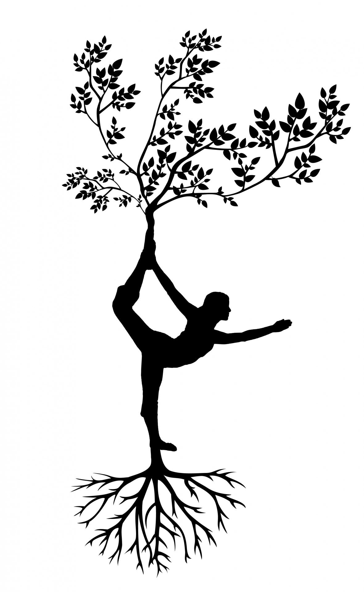 yoga-1516166497RBajpg
