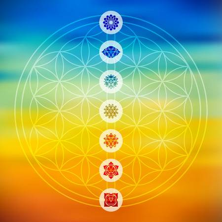 52162450-stock-vector-sacred-geometry-flower-of-life-design-with-seven-main-chakra-icons-over-colorful-blurred-gradient-bajpg